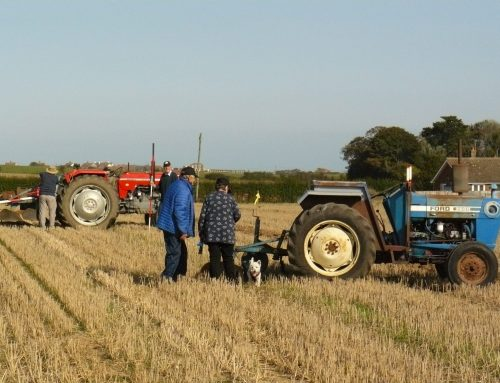 Plough Day 20th September 2020