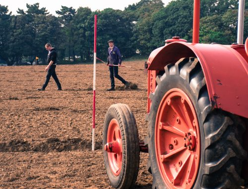 Trimmingham Plough Day 19th September 2021 part2
